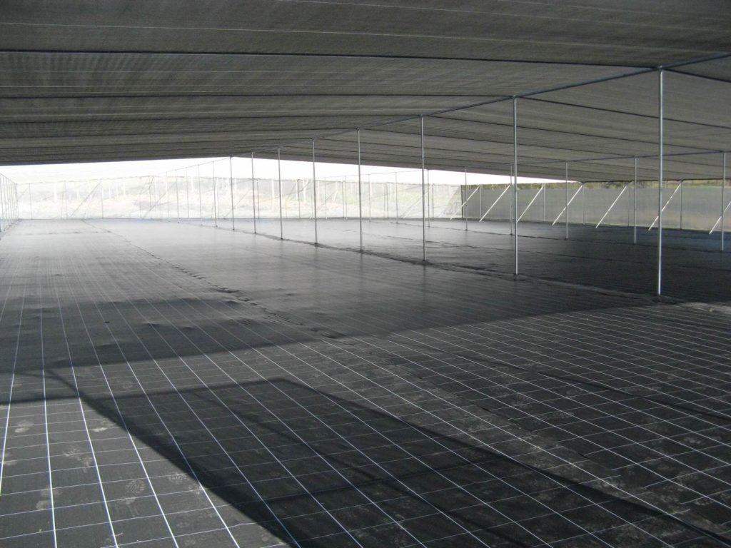 Vertical Wall Shadehouse Greenhouse