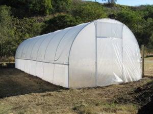 4.2m Poly Tunnelhouse Hothouse