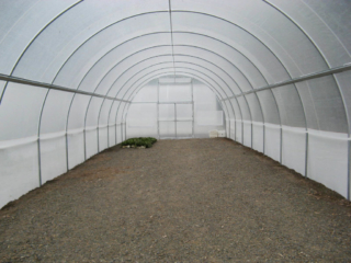 6.0m Poly Tunnelhouse Hothouse