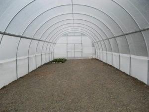 6.0m Poly Tunnelhouse Hothouse