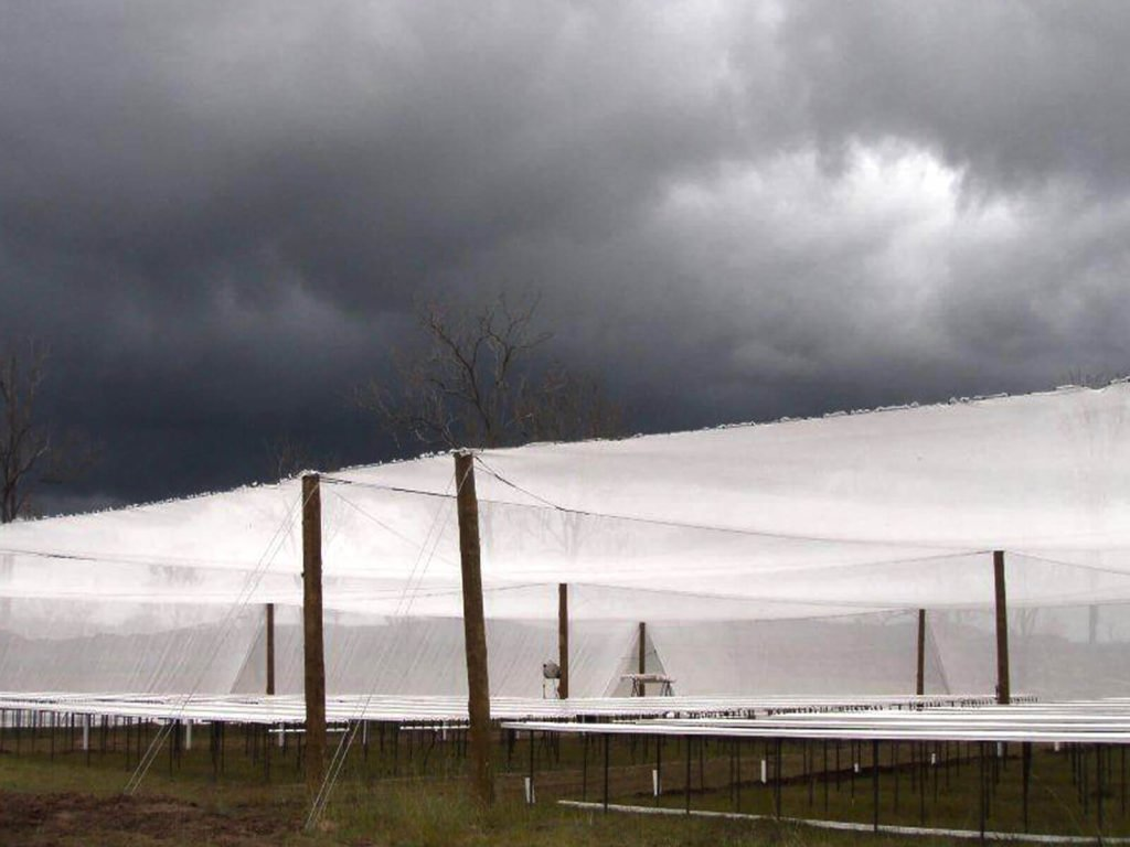 Hail-Guard Netting Structures